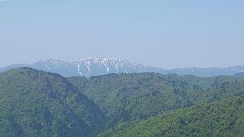 nougouhakusan-1.jpg