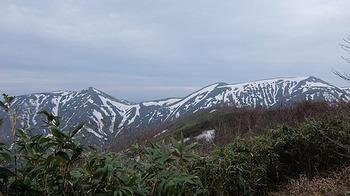 sanchou-isokura-houmen.jpg