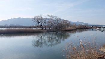 ibigawa-2.jpg