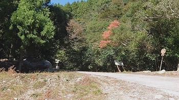 kazura-tozanguchi.jpg