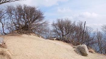 matsuo-one-atama-top.jpg